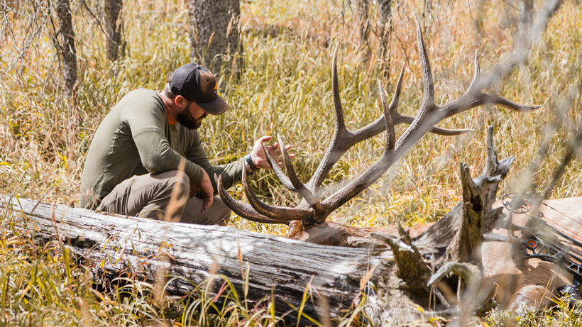 Planning an archery elk hunting using the moon and equinox