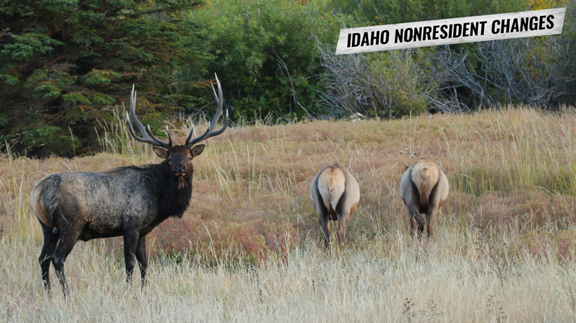 Potential big Idaho nonresident hunting changes