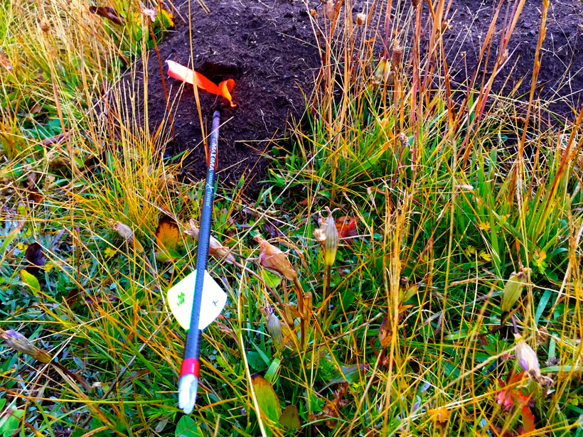 Practice bowhunting shots on a dirt mound while out hunting