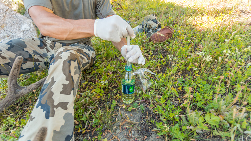 Pulling up velvet antler preserve into syringe