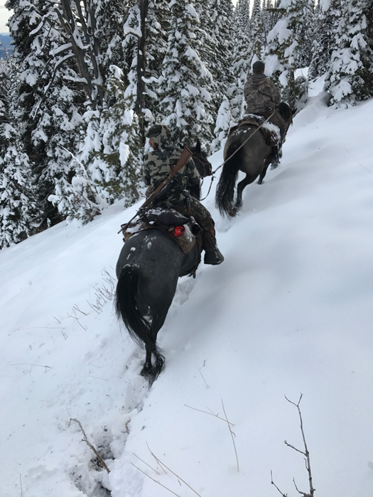 Pushing up a trail after elk