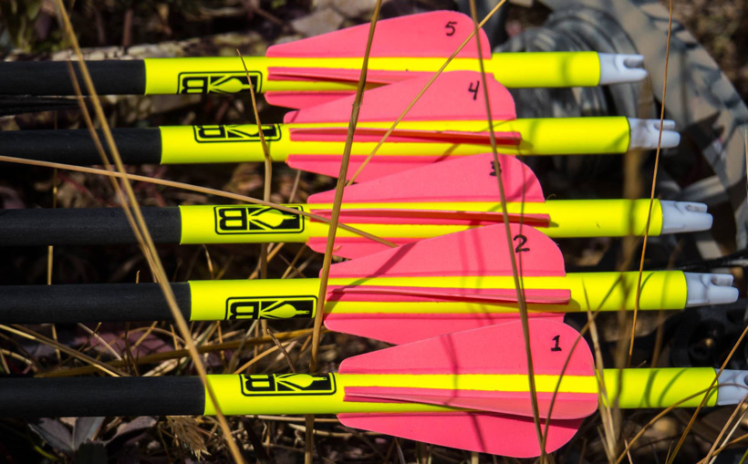 Quiver full of arrows