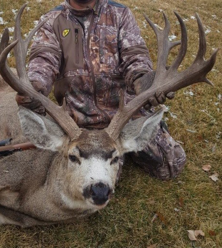 Campbell County poached Wyoming mule deer