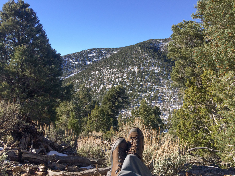 Relaxing and looking for a Nevada bull elk