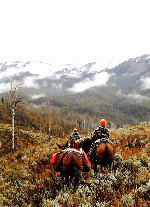 Riding horses out of the mountains after a moose hunt
