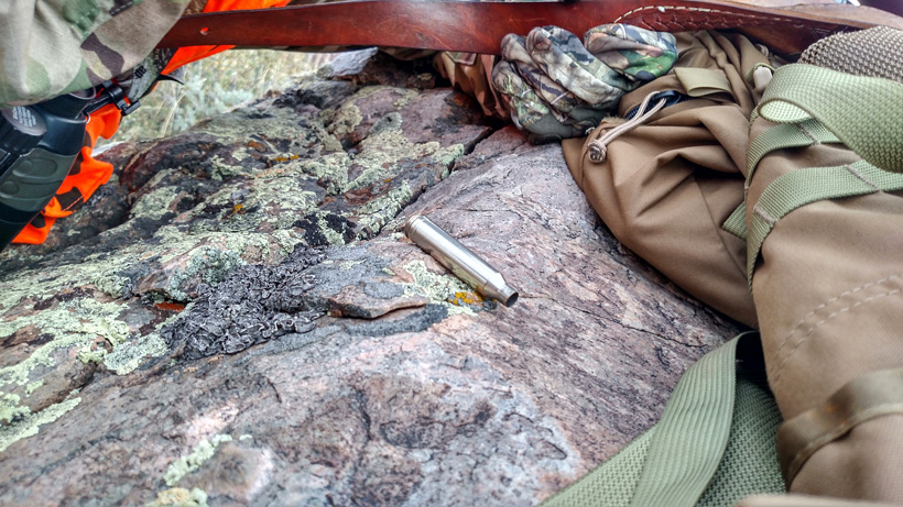Rifle bullet cartridge after shooting mule deer buck