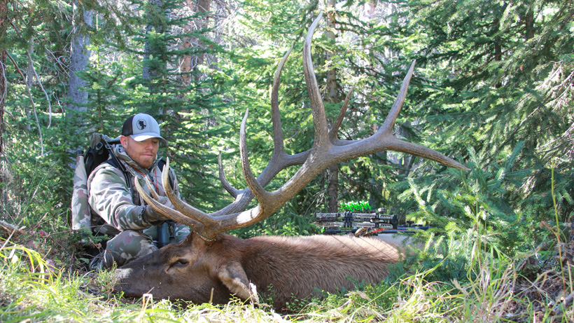 Ron Elmer with his 2015 Colorado archery bull elk