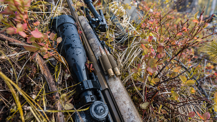 SAP two round holder on hunting rifle