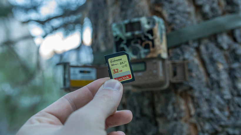 SD card when running trail cameras