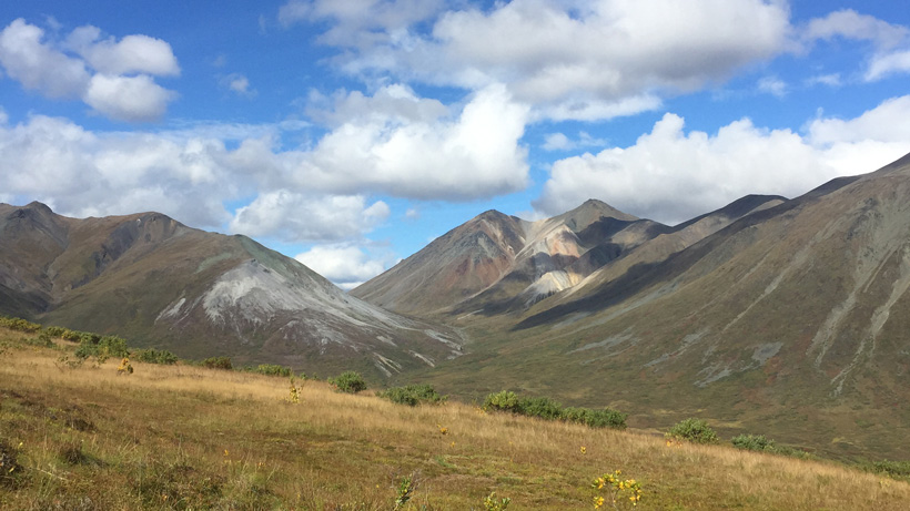 Scenery while hunting mountain grizzly bears