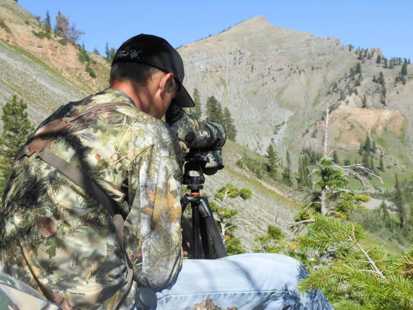 Scouting for Wyoming mule deer