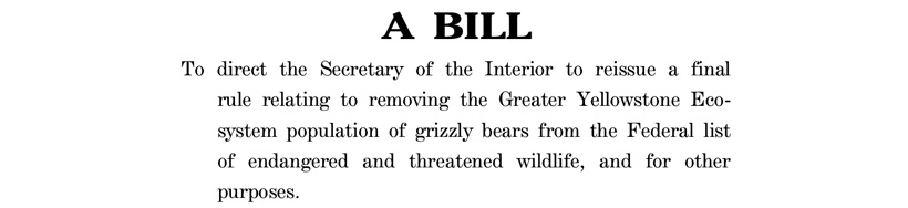 Screenshot of Grizzly Bear Management Act of 2021