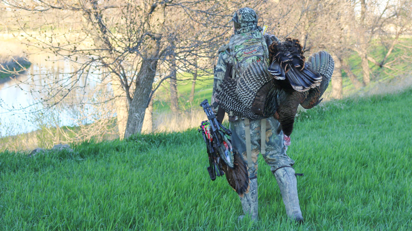 Sean Evenson packing out turkey