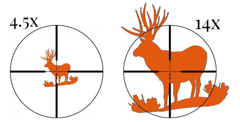First Focal Plane Vs Second Focal Plane Riflescopes For Hunting
