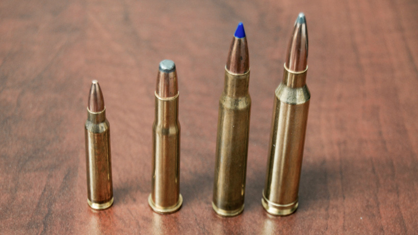 Selecting the right rifle cartridge for hunting