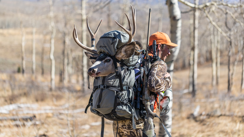 Seth Webb packing out Colorado mule deer in Stone Glacier backpack