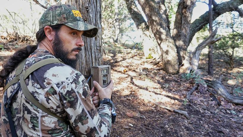 Setting trail cameras for black bears