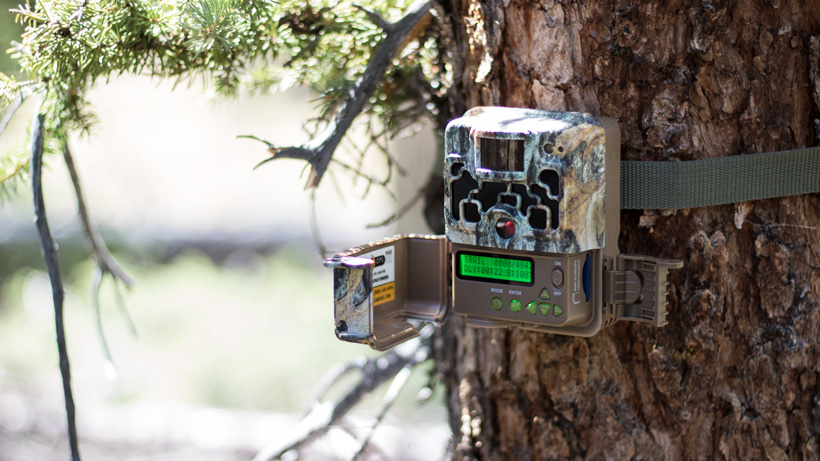 Setting up Browning trail camera
