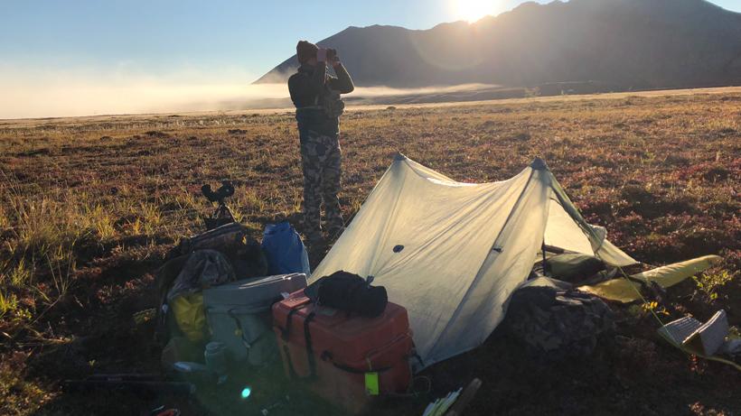 Sheep hunting camp