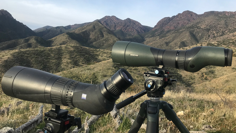Side by side Swarovski STX and Zeiss Harpia spotting scope field test