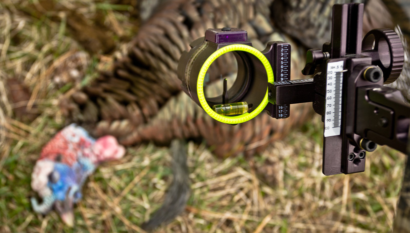 Single pin bowsight while turkey hunting