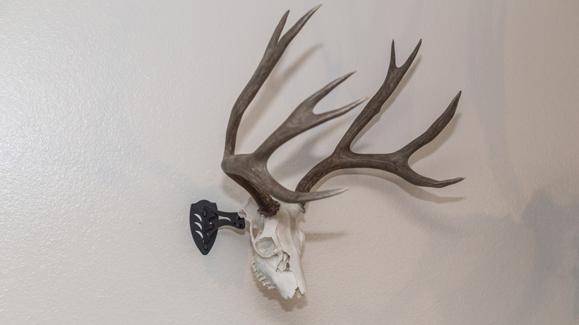 Skull Hooker mounting bracket with mule deer