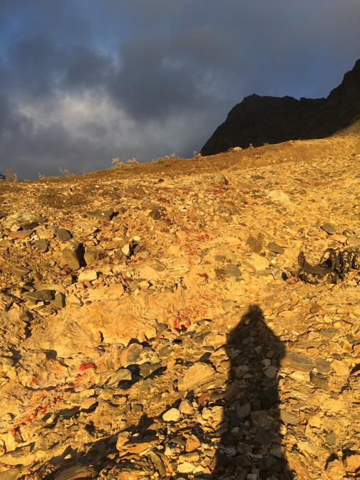 Slowly climbing down the mountain