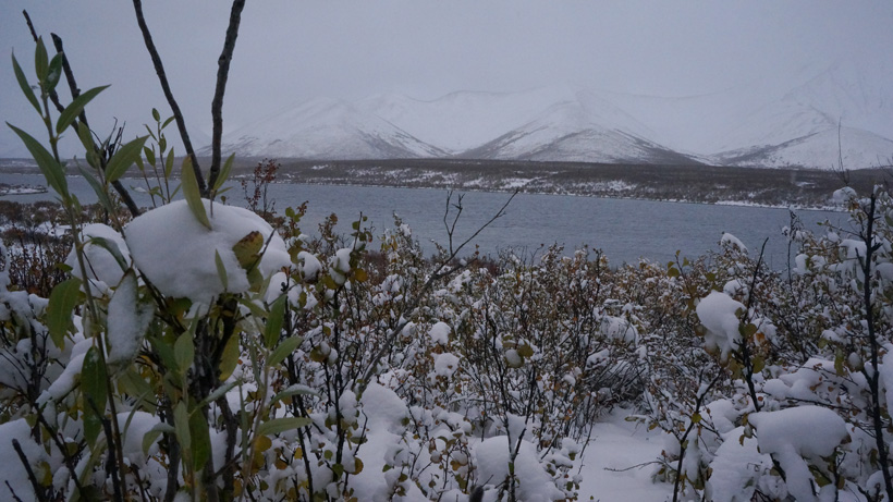 Snowed in weather of the Yukon backcountry
