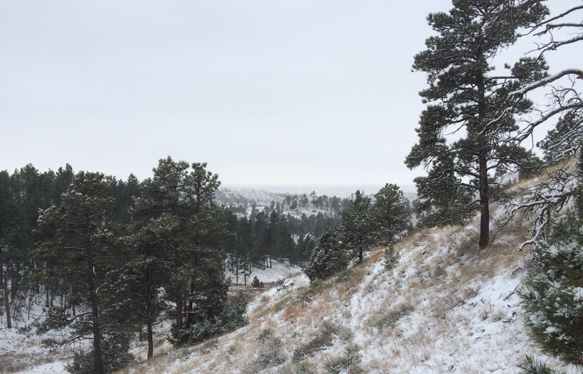 Snowy day of hunting mule deer in Montana