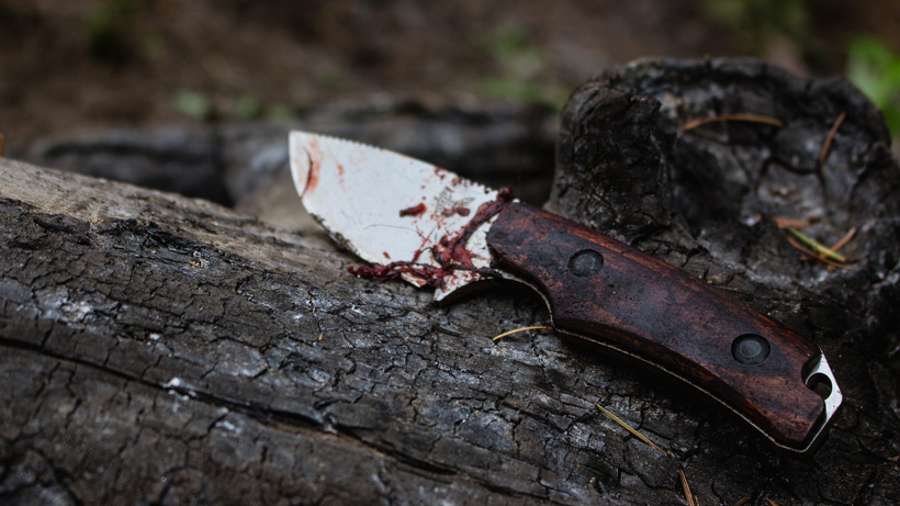 Solid fixed blade knife for hunting