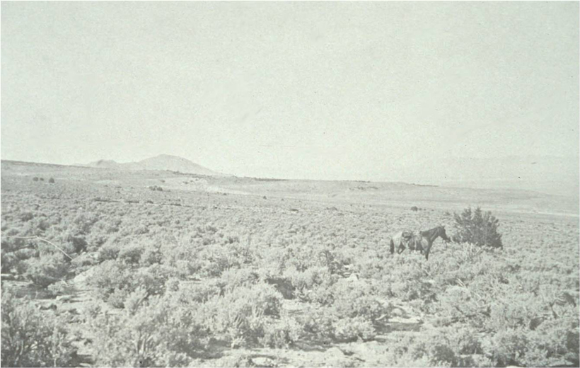 Stansbury Mountains in 1901