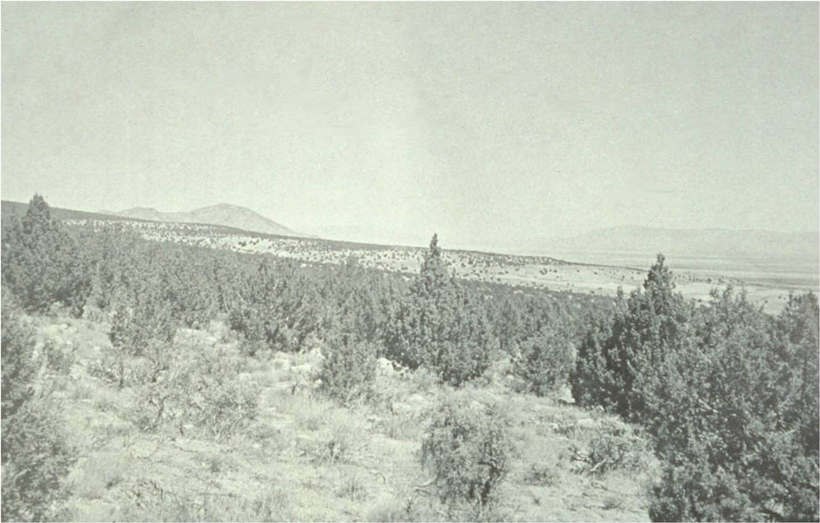 Stansbury Mountains in 1976