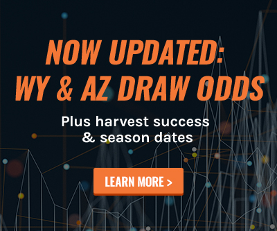 Draw Odds Updates