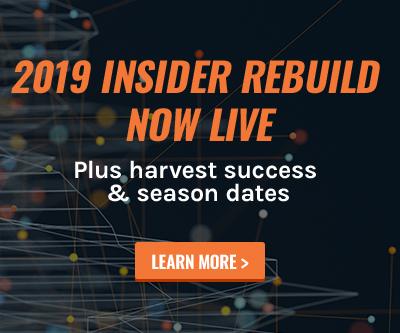 INSIDER Rebuild
