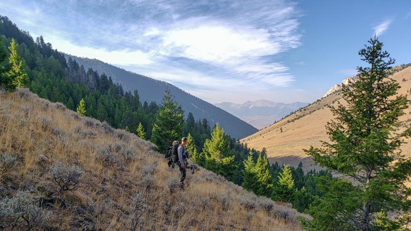Steep terrain archery elk hunting