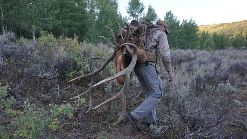 Stephen Spurlock packing out a bull elk