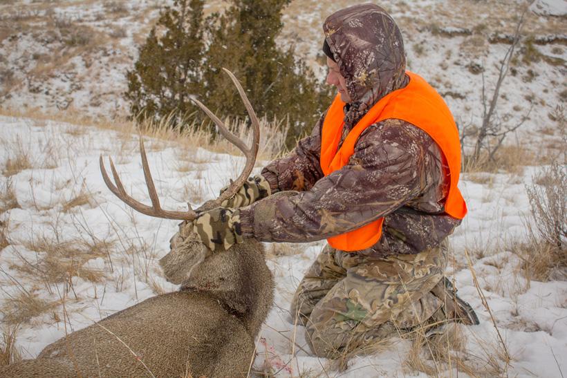 Steve King with his 2012 Montana mule deer buck back view
