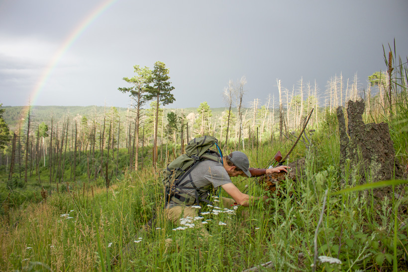 Stump shooting for practice while bowhunting the backcountry