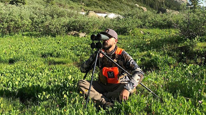 Summer scouting for mule deer