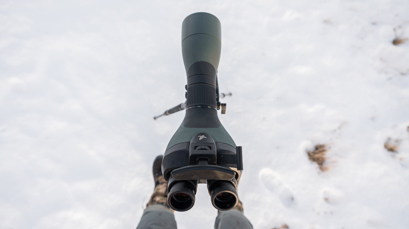 Swarovski BTX 85mm objective hunting mule deer