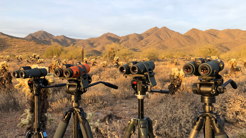 Swarovski binocular glassing comparison