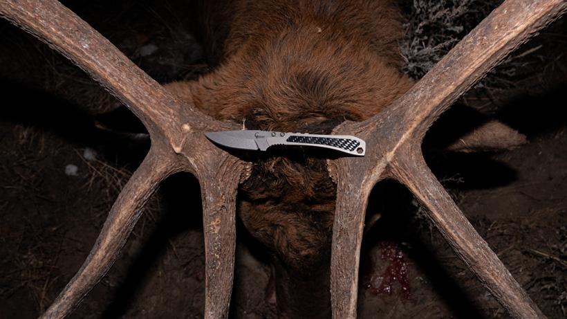 TUR Carbon Pro knife on elk antlers