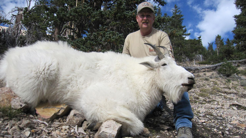 Tad Jolley with his mountain goat
