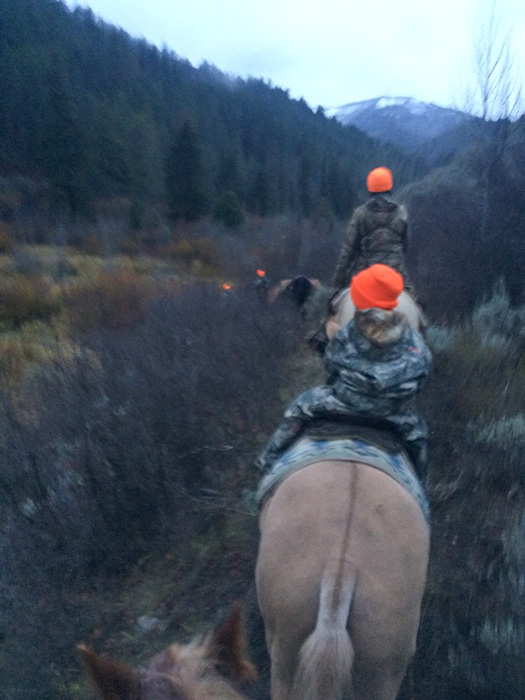 The ride in to locate moose