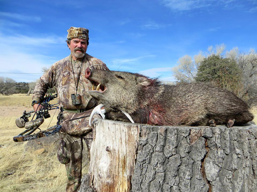 Timothy Winslow with his Arizona archery javelina