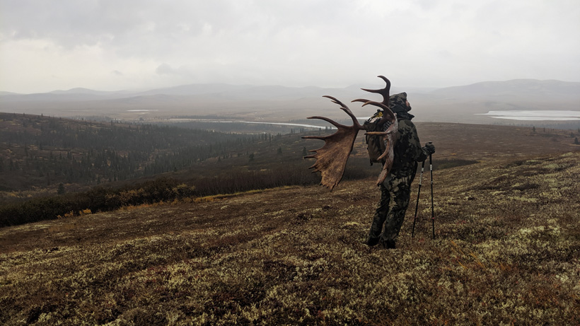 2019 Alaskan moose hunt