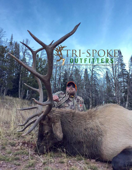 Tri Spoke Outfitters 2015 client bull elk