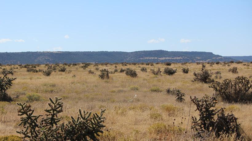 Typical Colorado antelope hunting terrain