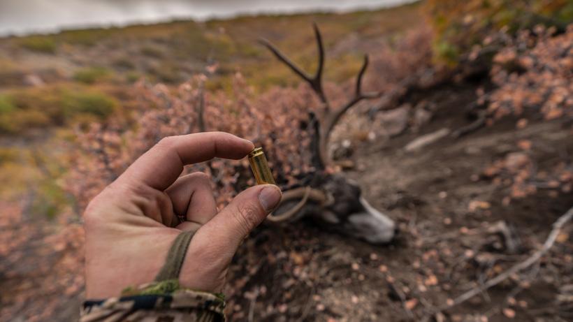 Ultimate muzzleloader with mule deer buck