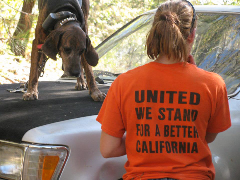 United we stand for a better California